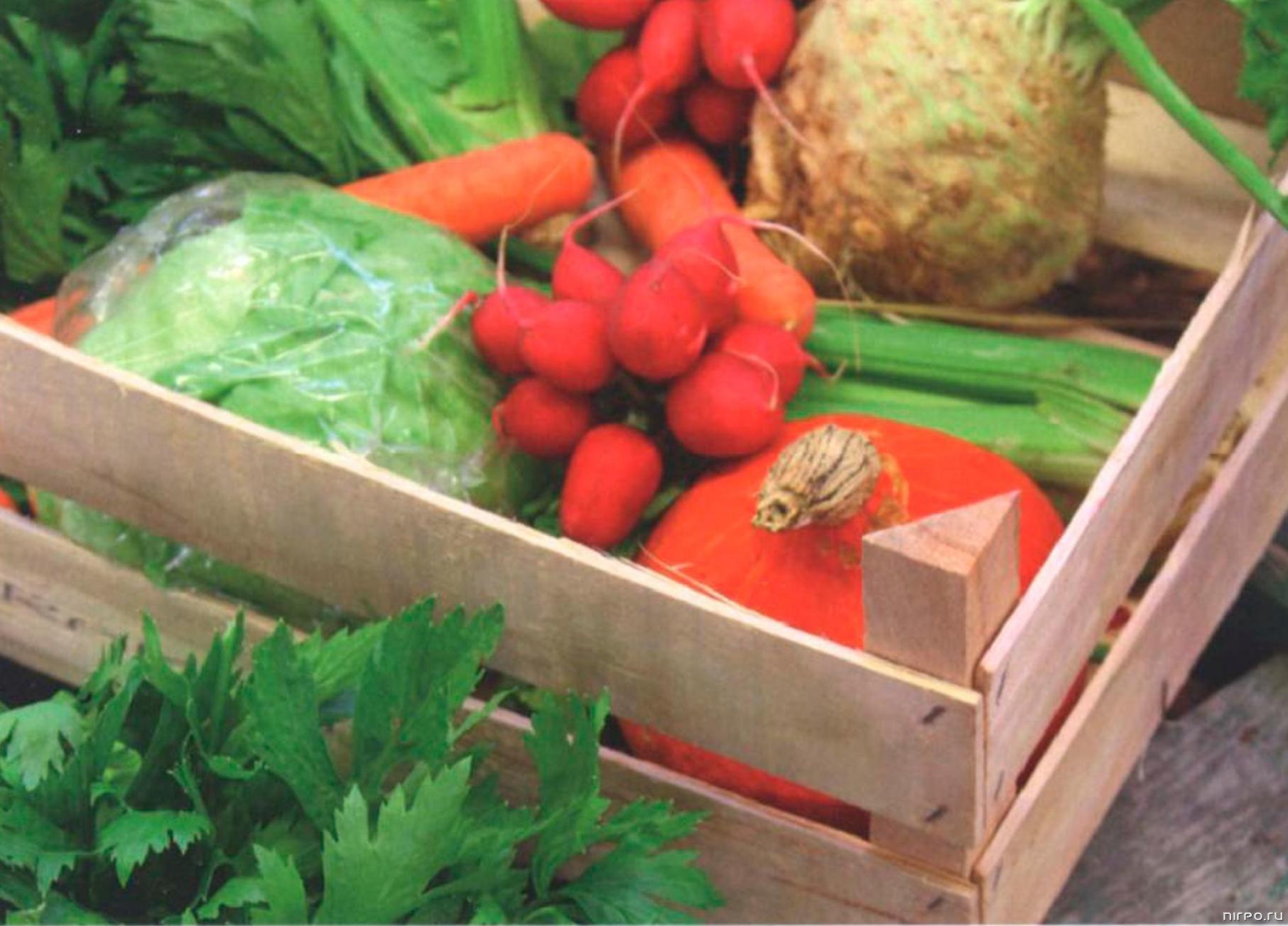 Овощи на балконе: как правильно хранить зимой.