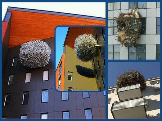 Гнездовая идея