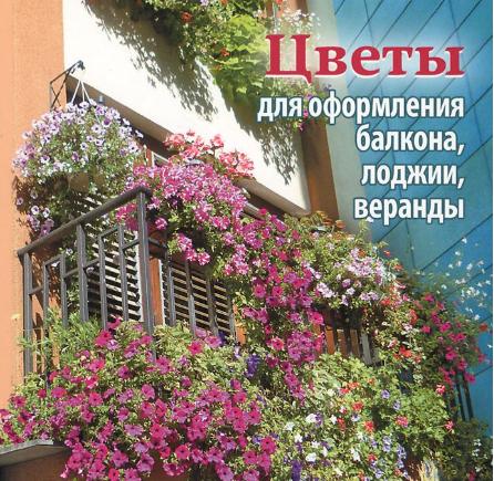 Цветы для оформления балкона лоджии веранды