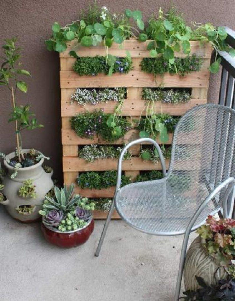 Вертикальное озеленение балкона